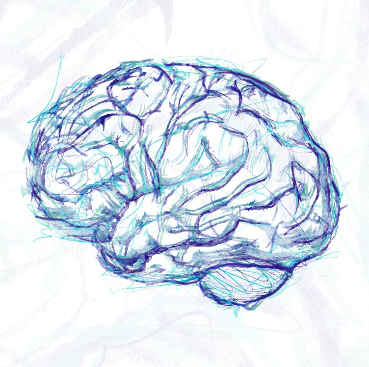 Dzień Mózgu